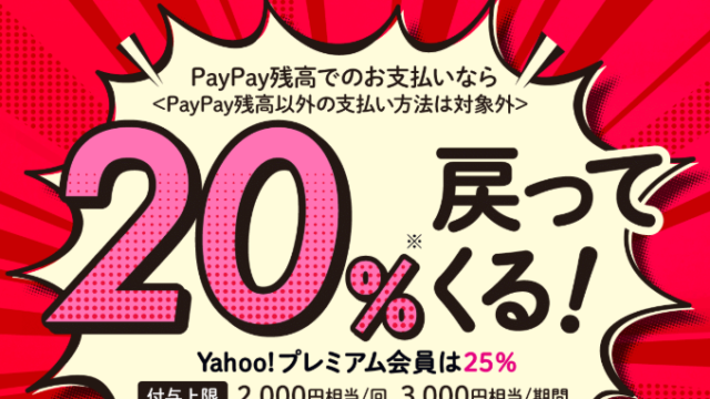 paypay-2004-ic